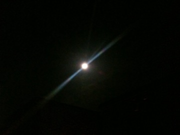 月映えな夜