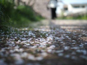雨上がりの夜に映る景色と心情